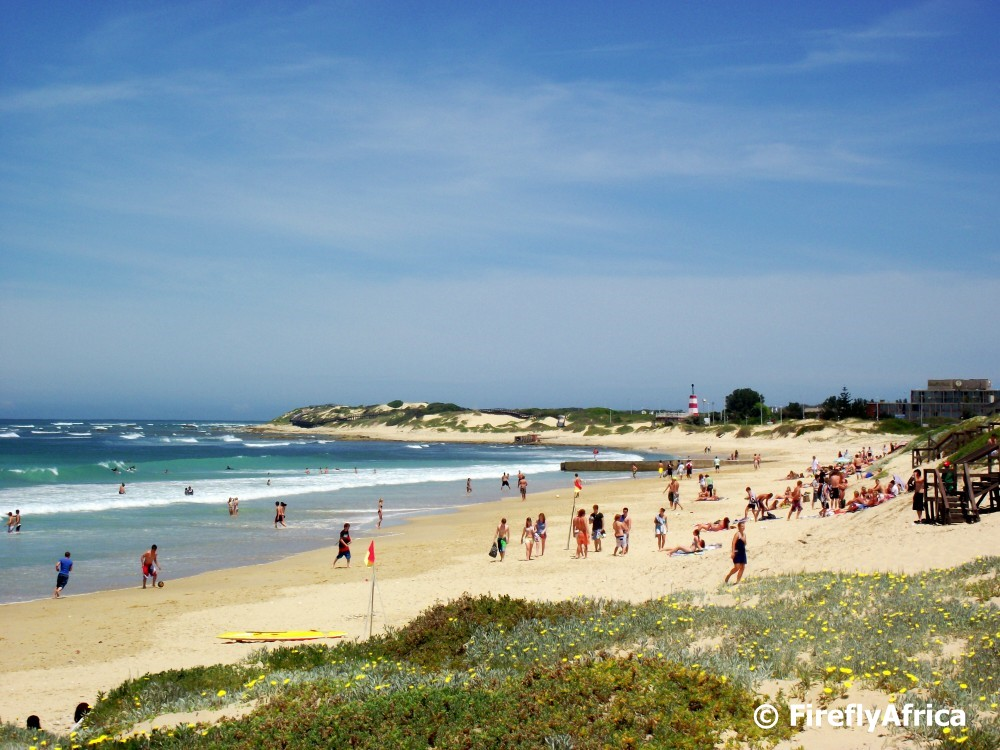 Pollock Beach - Best Areas to Stay in Port Elizabeth