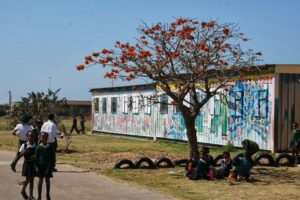 Local Life on the Township Tour - Things You Should Do In Port Elizabeth