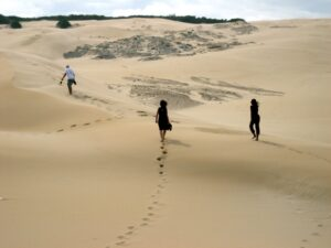 Maitland Sand Dunes - Things You Should Do In Port Elizabeth